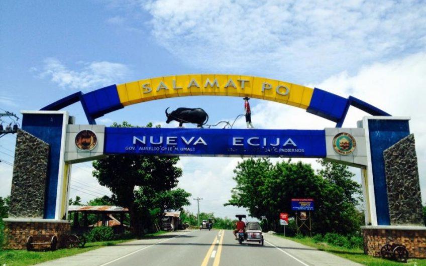 Brgy. Callos, Penaranda, Nueva Ecija Lot for Sale
