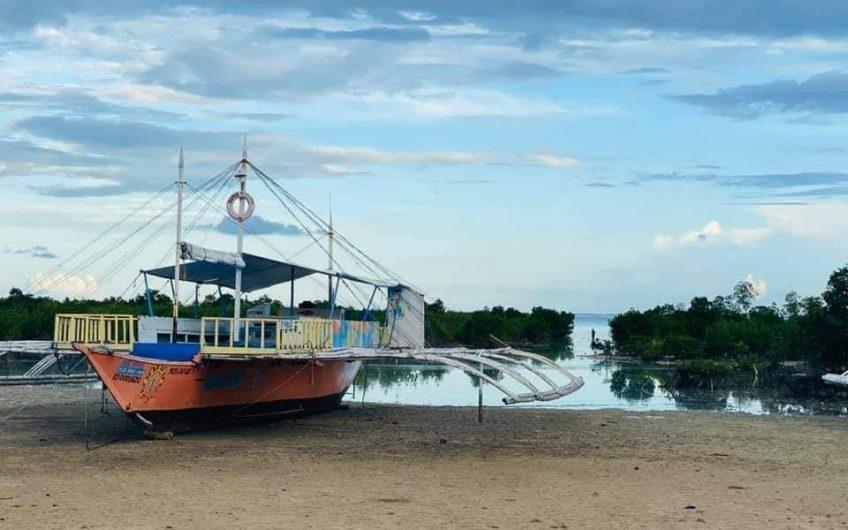 Olango Resort Island Cebu For Sale