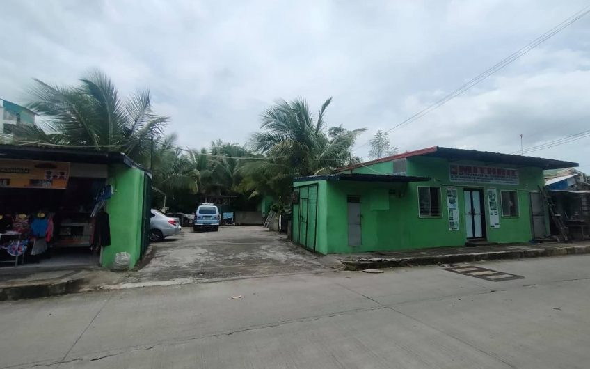 MAGSAYSAY AVENUE NOVALICHES PROPERTY FOR SALE